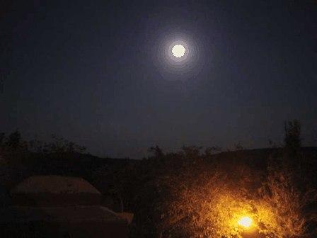 Hoy hasta la luna es falsa
